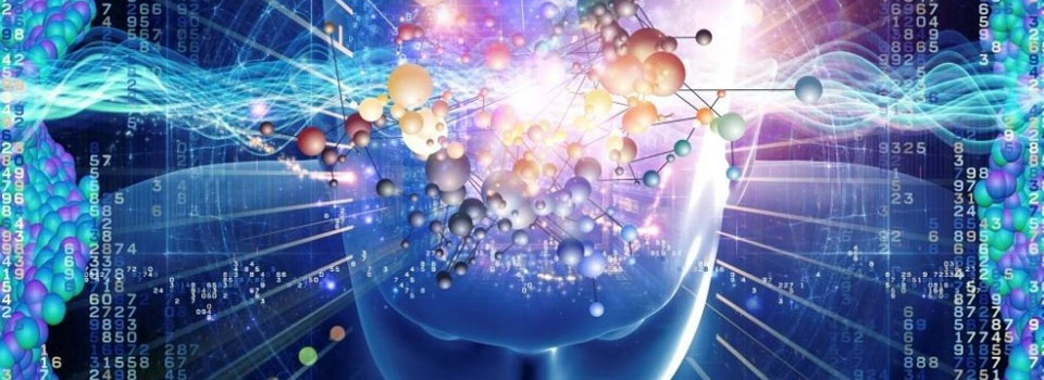 brain-quantum